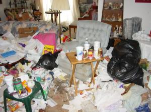 Real-Messy-House